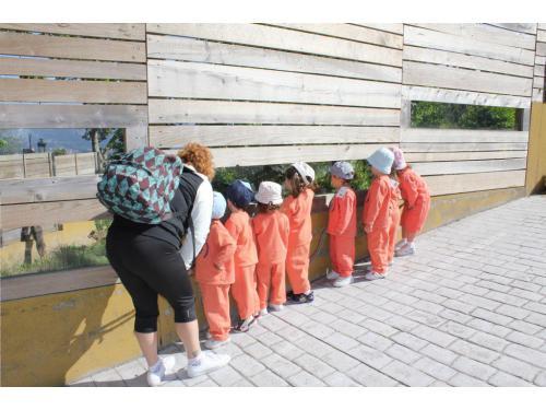 Salida al Zoo