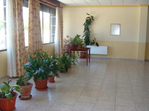 Salón Residencia San Sebastián