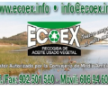 Ecoex