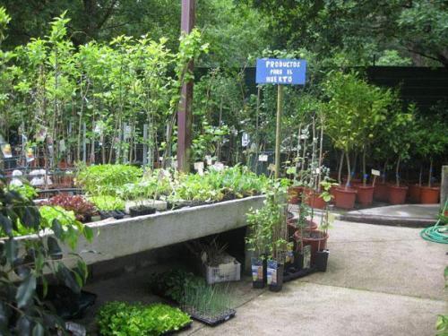 viveros y jardines crespo vigo jardiner a citiservi