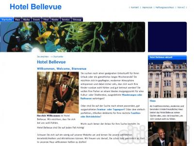 Diseño de la web de su empresa, GRATIS al contratar un plan de hsoting anual