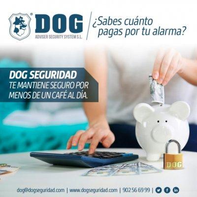 ¿Alguna vez has tenido la sensación de estar pagando demasiado por tu alarma?  En DOG Seguridad nos hemos propuesto que no pagues de más por tu alarma o sistema de seguridad.  Es hora de revisar los costes de tu alarma y venir con DOG Seguridad. Por tu tr