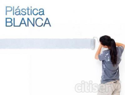 80 m2 VACIO Pintura plástica  Incluye: · Tapado completo de puertas, ventanas, rodapies, suelo, radiadores, armarios, etc. · Arreglo de grietas, deconchones, manchas... · Pintado de paredes y techo en pintura plástica blanca de 1ª calidad. ·