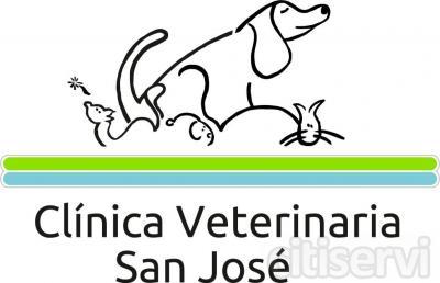 Revisión completa de su animal gratuita, pida su cita en el teléfono 955321470