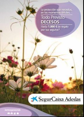 Segursorpresa decesos oficina local adeslas for Oficinas de adeslas en barcelona