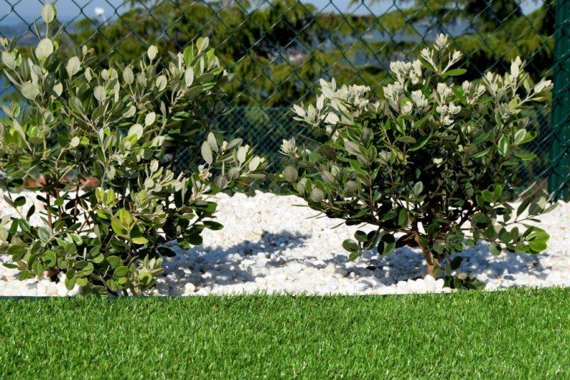 Alma Jardinería