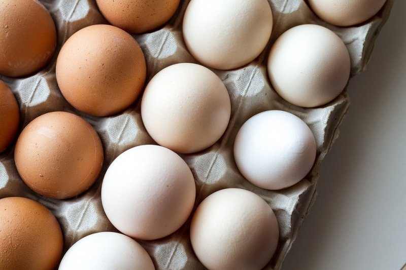 huevos fulgencio