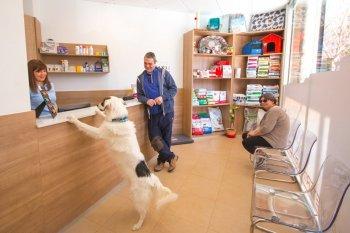 Clínica Veterinaria Bolta