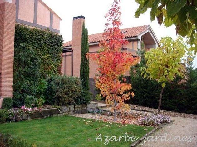 Azarbe jardines