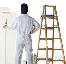 cupón para pintar su casa de 50 m2 solo 350€ hasta 2m de altura se incluye pintura y materiales