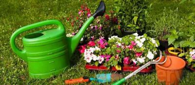 ¡Oferta! Obtén hasta un 30% en el mantenimiento de su jardín. Ahora más por menos. En Limpiezas Lonso también cuidamos de las zonas verdes de su comunidad, porque para nosotros cada detalle importa.  Aprovecha esta oferta junto con la limpieza de s