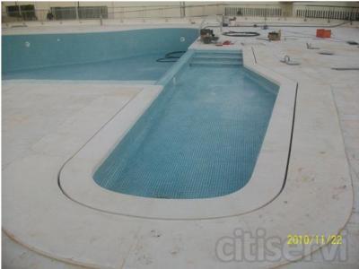 piscina de 8x4 con sistema desbordante de diseño, gresite y depuradora, completa.