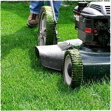 Descuento del 20% en la instalación o reparación de su sistema de riego al contratar el servicio de mantenimiento de su jardin, bien sea comunitario o individual.