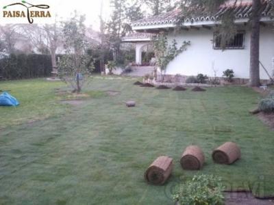 Mantenimiento de jardines a comunidades de vecinos, particulares, empresas. Diseño 3D de jardines. Construcción de áreas verdes.