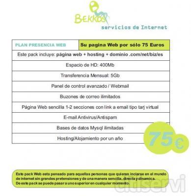 Pagina Web Plan Presencia www.bekkos.com