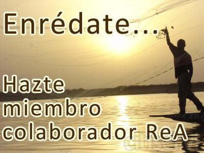 Enrédate... Hazte miembro-colaborador de la Fundación ReA