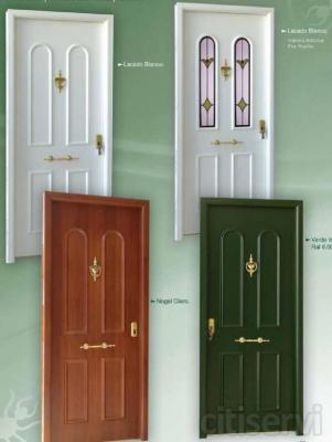 Puertas de entrada, varios modelos a elegir de alta seguridad. 10% descuento.