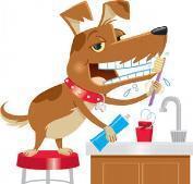queremos ofreceros una COMPLETA LIMPIEZA BUCODENTAL para tu mascota con un 35% de DESCUENTO, por tan solo 94.50 €.  Tener una mascota requiere tantos cuidados como los de uno mismo. La base para prevenir la acumulación de sarro y las enfermedades per